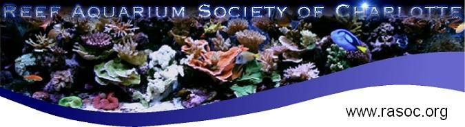 Reef Aquarium Society of Charlotte (RASOC)